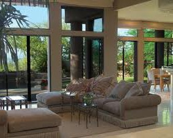 Residential Window Film Shandon 29205
