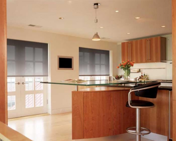 Electronic Roller Shades 4