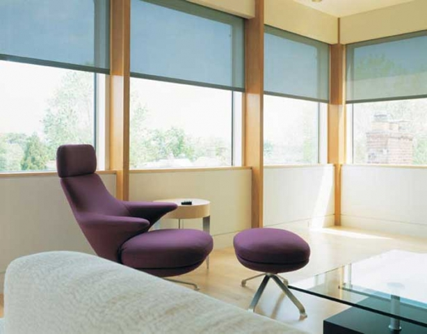 Electronic Roller Shades 8