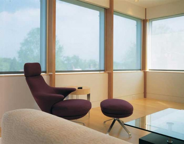 Electronic Roller Shades 9
